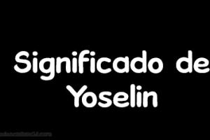 significado de yoselin